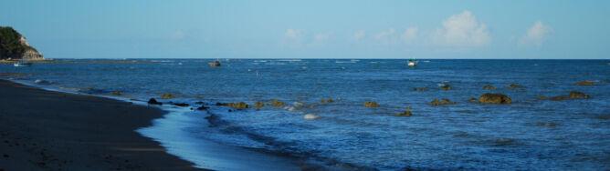 Oceany kwaśnieją w zastraszającym tempie. Mogą zagrozić morskiej faunie
