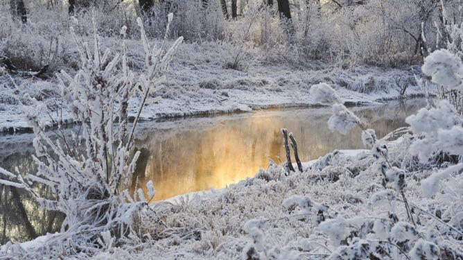 Zima wróci do Polski. Mróz w najcieplejszym momencie dnia i śnieg