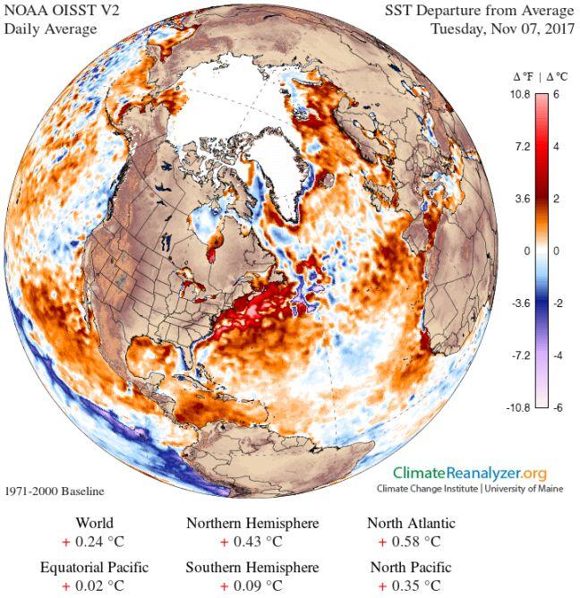 Temperatura wód na świecie (NOAA/University of Maine)