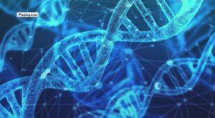 Nowe badania naukowców nad początkiem życia